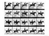 "Man and Horse Jumping, from ""Animals in Motion"", London, Published 1907 Impressão giclée por Eadweard Muybridge"