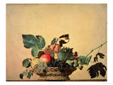 Basket with Fruit, circa 1596 Giclée-tryk af  Caravaggio
