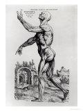 Musculature Structure of a Man Giclée-Premiumdruck von Andreas Vesalius