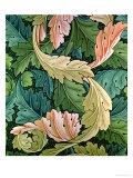 """""""Acanthus"""" Wallpaper Design, 1875 Reproduction procédé giclée par William Morris"""