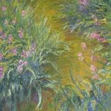 Iris Giclée-Druck von Claude Monet