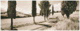 Road Through Tuscany Posters by Michael Hudson
