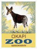 Okapi Copenhagen Zoo Giclée-Druck