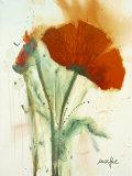 Bunch of Poppies II Art by  Marthe