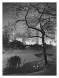 Winter at Night, New York, Central Park Giclée-Druck
