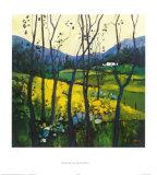 Springtime Galloway Reproduction pour collectionneur par Davy Brown