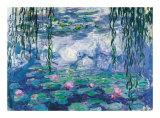 Nympheas Poster von Claude Monet