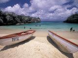 Playa Lagun, Curacao, Caribbean Fotografie-Druck von Michele Westmorland