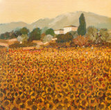 Late Summer, Tuscany Poster av Hazel Barker