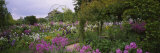 Flowers in a Garden, Foundation Claude Monet, Giverny, France Fotoprint van Panoramic Images,