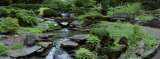 River Flowing Through a Forest, Inniswood Metro Gardens, Columbus, Ohio, USA Photographic Print