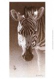 Grant, the Zebra Art by Robert L. Caldwell