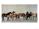 Mares and Foals Without a Background, circa 1762 Giclée-tryk af George Stubbs