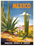 Cacti, Mexico Affiches