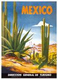 Cacti, Mexico Plakater