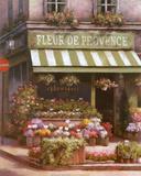 Fleurs de Provence Kunstdrucke von T. C. Chiu