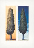 2 Zypressen Rechts, 1999 Limited Edition by Folkert Rasch