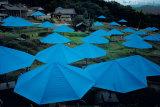 Umbrellas, 1984-1991 Impressão colecionável por  Christo