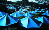 Umbrellas No. 12, 1991 - Signed Impressão colecionável por  Christo