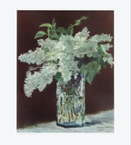 White Lilac in Glass Vase Samlertryk af Edouard Manet