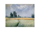 Wheatfield, 1881 Pôsteres por Claude Monet