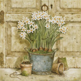 Potted Flowers II Prints by Eric Barjot