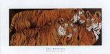 Three Ages of Tigers Posters par LISA BENOUDIZ