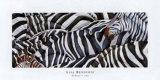 Zebras's Sea Affiches par LISA BENOUDIZ