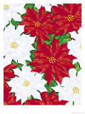Poinsettia Pattern Affiches
