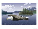 A Bald Eagle Flying Over a Lake Affiche