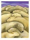 Texture, Sleeping Polar Bears Affiches