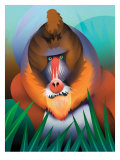 Baboon Posters