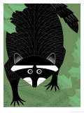 A Raccoon Affiches