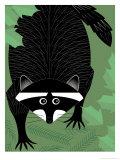 A Raccoon Láminas