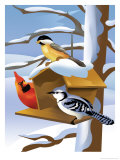 A Bluebird, Cardinal, and Finch Sitting by a Birdfeeder Posters