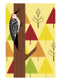 Woodpecker and Trees Affiches