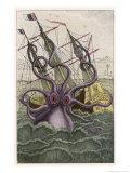Kraken Attacks a Sailing Vessel Giclée-tryk af Denys De Montfort
