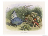 Teasing a Butterfly Lámina giclée por Richard Doyle