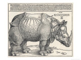 The Indian Rhinoceros is the Largest of the Asian Spiecies Giclée-vedos tekijänä Albrecht Dürer