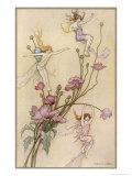 Fairies and Flowers Giclée-Druck von Warwick Goble