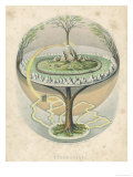 Yggdrasil the Sacred Ash the Tree of Life the Mundane Tree of Norse Mythology Giclée-tryk