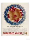 Advertisement for Shredded Wheat Promoting It as the National Breakfast Giclée-vedos