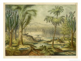 Animals and Plants of the Carboniferous Era in Europe Giclée-Druck von Ferdinand Von Hochstetter