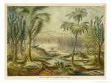 Animals and Plants of the Carboniferous Era in Europe Stampa giclée di Ferdinand Von Hochstetter