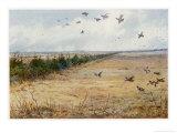 Partridges at Sandringham Giclée-tryk af Archibald Thorburn