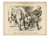 William Gladstone Taking the (Irish) Bull by the Horns Stampa giclée di Tenniel, John
