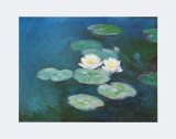 Nympheas in the Evening Plakater af Claude Monet