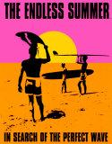 Un été sans fin, à la recherche de la vague parfaite - Surf Plaque en métal