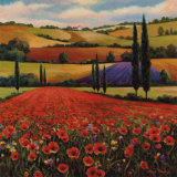 Fields of Poppies II Poster von T. C. Chiu