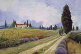 Holiday in Tuscany Affiches par  Hawley